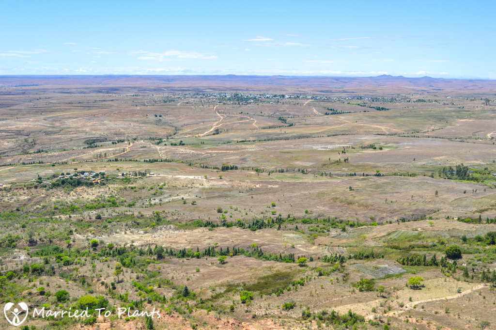 Isalo National Park View