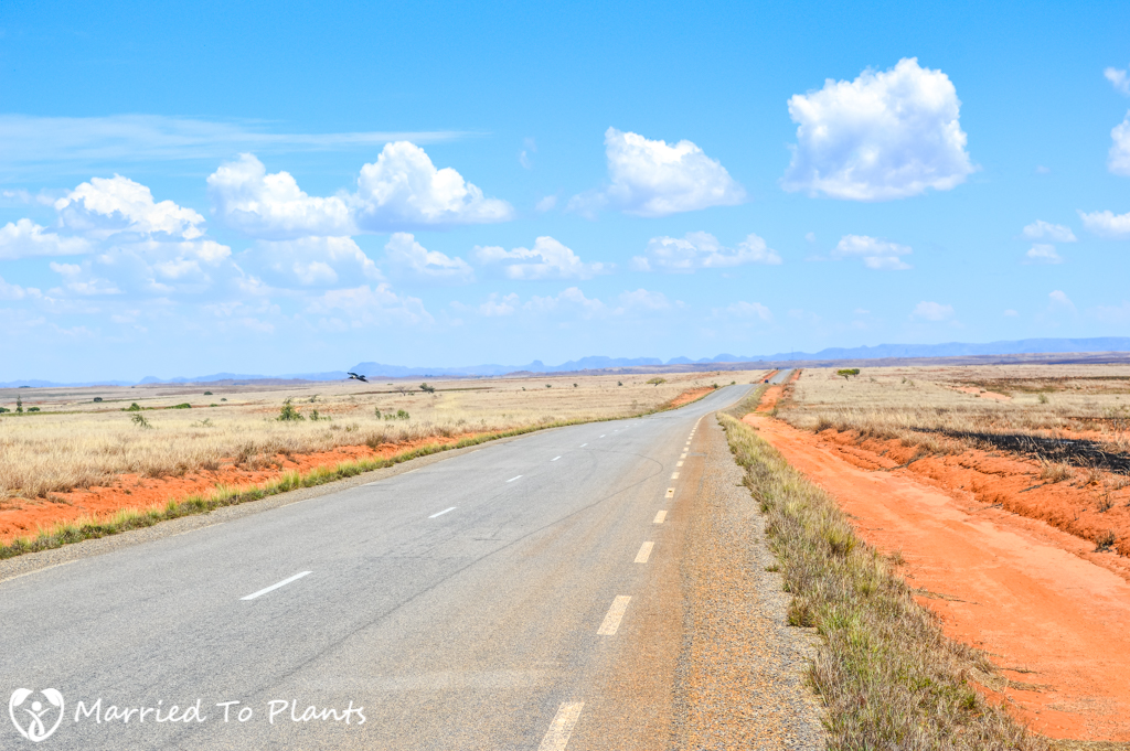 Road to Isalo National Park