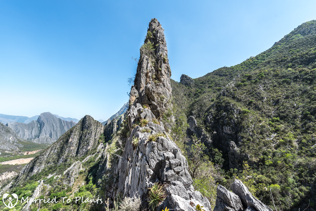Huasteca Canyon -Limestone Pinnacle