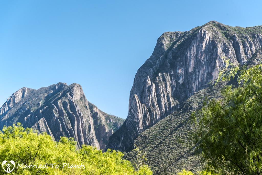 Huasteca Canyon Landscape