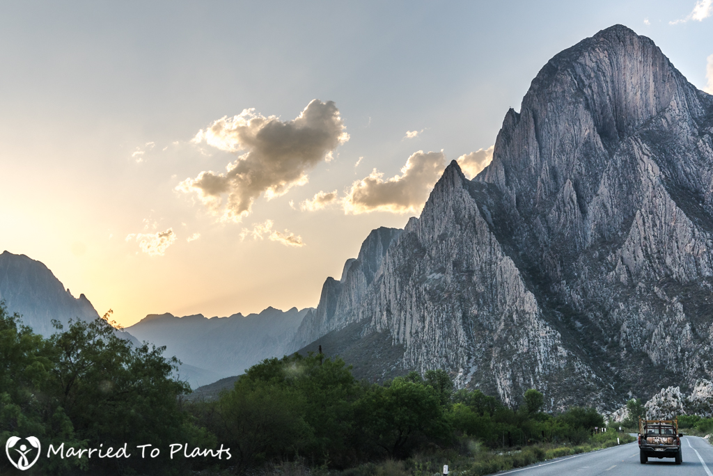 Huasteca Canyon at Sunset