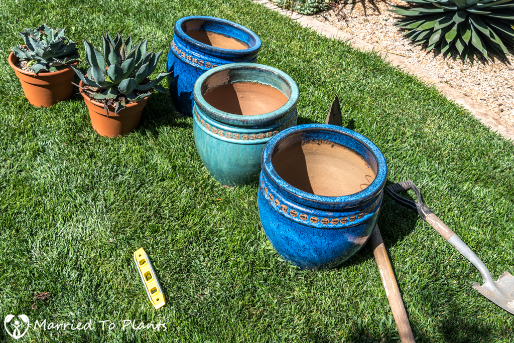 Agave Pots - Triple Pot Project