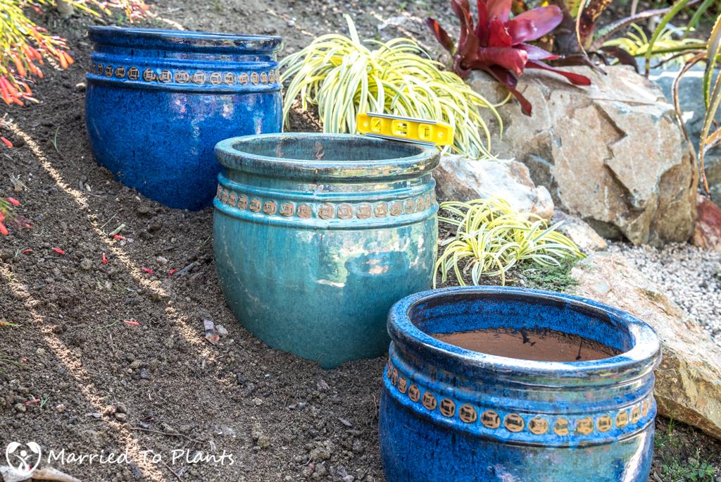 Agave Pots - Triple Pot Project