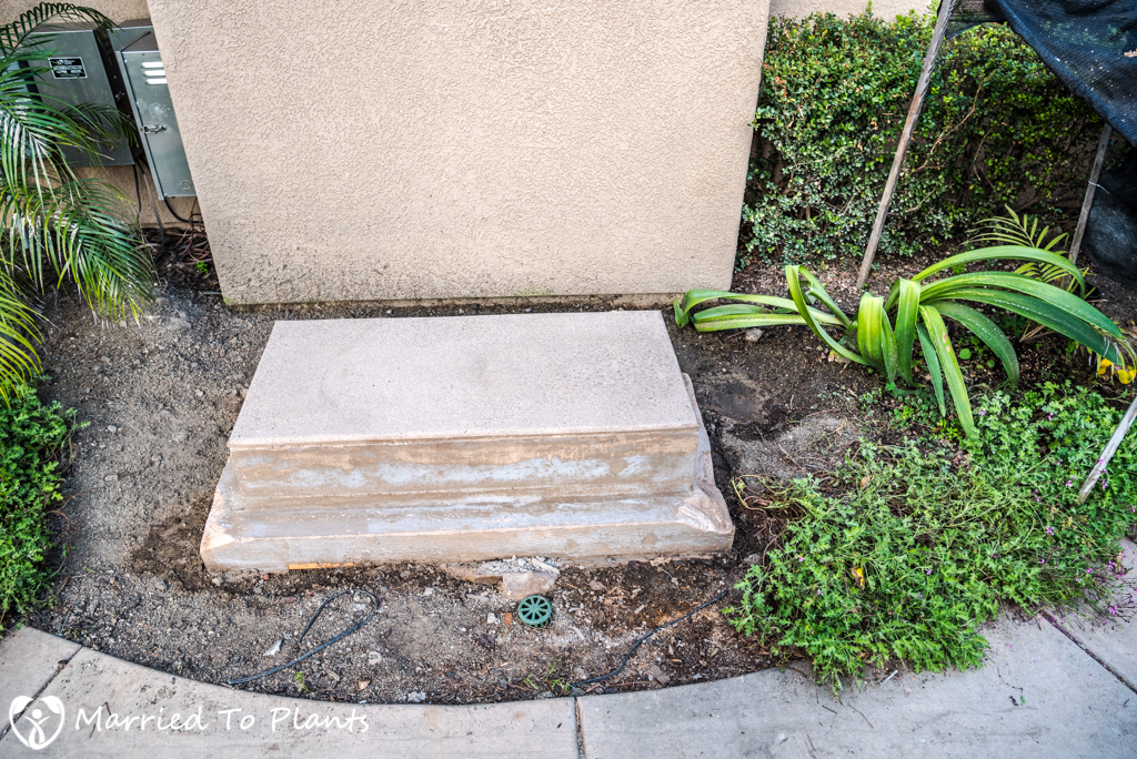 Garden Project Update - Buddha Platform