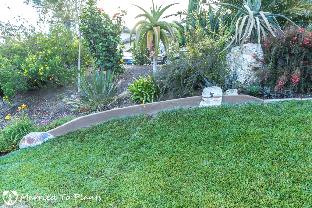 Garden Project Update - Finshed Mow Strip