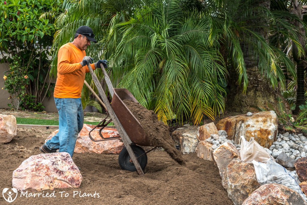 Planter Bed Preparation - Bioswale Mix in Wheelbarrow