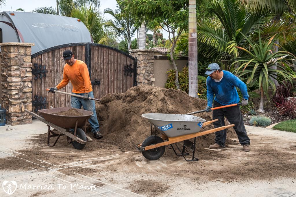 Planter Bed Preparation - Bioswale Mix in Wheelbarrow