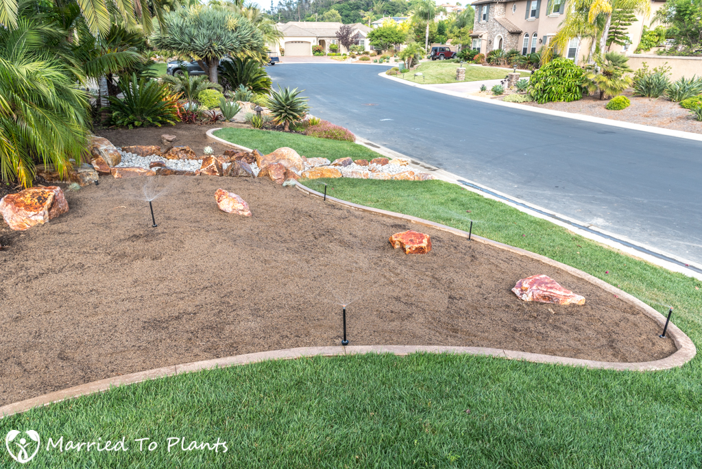 Planter Bed Preparation - Watering Down Soil