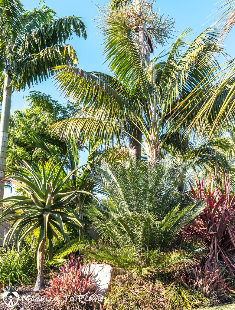 Geiger Garden - Front Yard